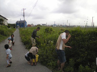 ミサキ開き2007